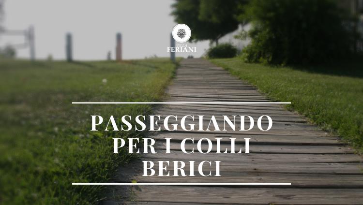 Itinerari a piedi nei Colli Berici