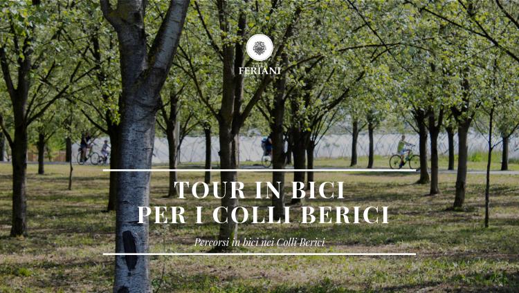 Tour in bici per i Colli Berici