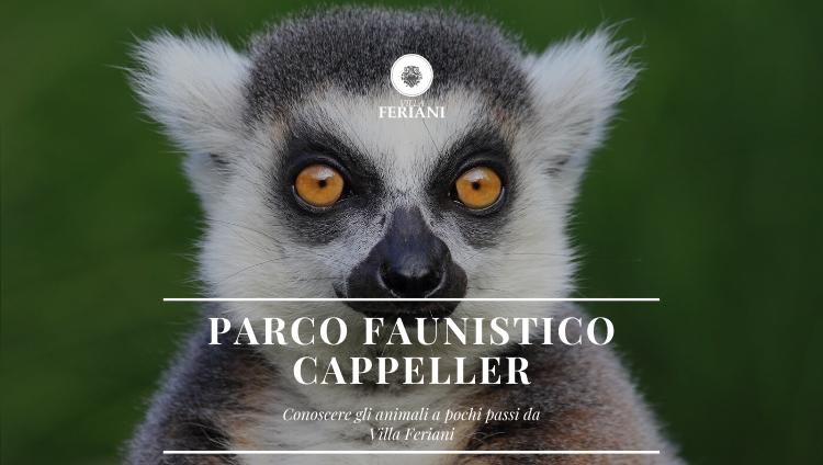 Parco Faunistico Cappeller a Cartigliano – L'oasi naturalistica per tutta la famiglia